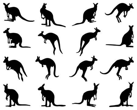 Silhouettes noires de kangourou sur fond blanc