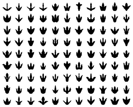 Black footprint of dinosaurs on a white background, vector