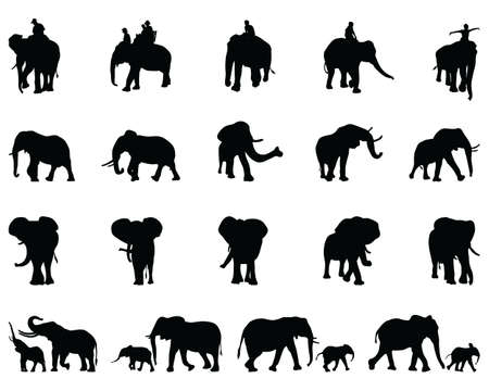 Black silhouettes of elephants on a white background Vettoriali