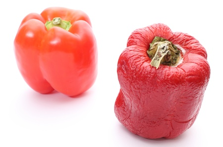 Two peppers - fresh and wrinkled. Isolated on white background photo