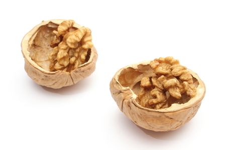 nutshells: Closeup of brown walnut in nutshells  Isolated on white background
