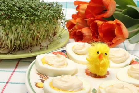 Closeup of yellow Easter chicken and halves of eggs with mayonnaise on colorful plate, fresh watercress and bouquet of tulips, Easter decoration photo