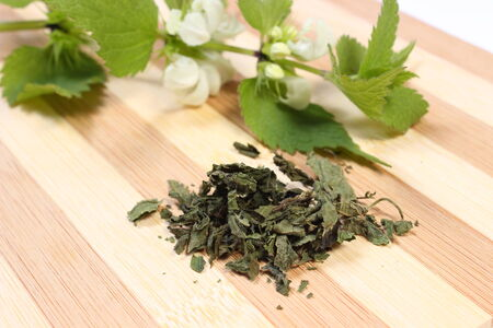Heap of dried nettle and fresh stinging nettle with white flowers in background lying on wooden cutting board photo