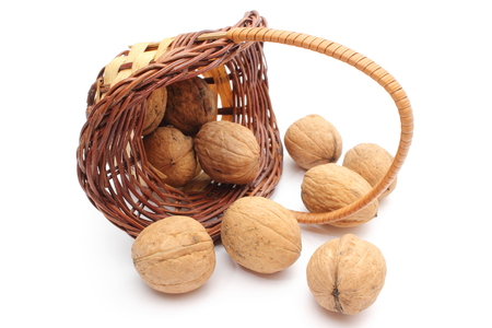 overturned: Overturned wicker basket with brown walnuts  Isolated on white background