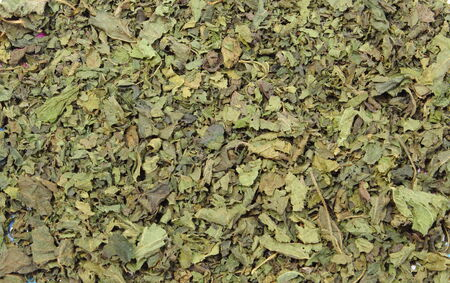 diuretic: Closeup of dried nettle as background