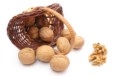 Overturned wicker basket with brown walnuts. Isolated on white background photo