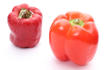 decompose: Two peppers - fresh and wrinkled. Isolated on white background