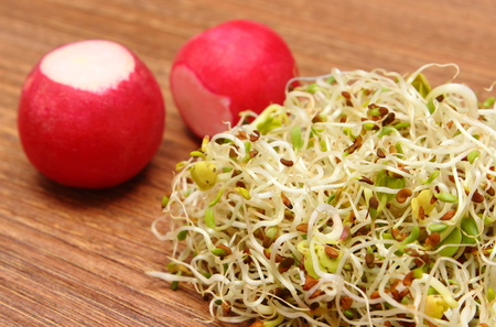 germinate: Fresh alfalfa sprouts and radish on wooden surface, healthy lifestyle diet food and nutrition