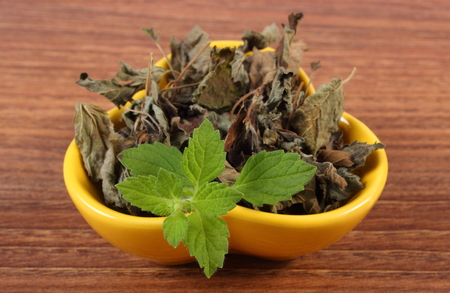 sedative: Healthy fresh and dried lemon balm in yellow bowl on wooden table, sedative herbs, concept for healthy nutrition and herbalism