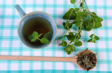 sedative: Heap of dried and fresh green lemon balm with cup of calming herbal drink on tablecloth, sedative herbs, concept for healthy nutrition and herbalism Stock Photo