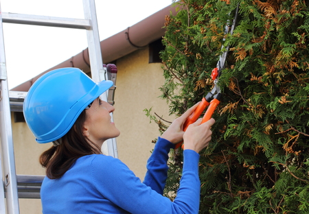 ladder safety: Smiling woman in protective helmet on aluminum ladder in garden uses gardening tool to trim bushes, seasonal trimmed bushes, safety at work