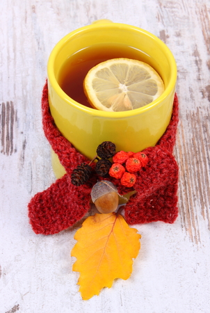 yellow alder: Cup of tea with lemon wrapped woolen scarf, warming beverage for flu and cold