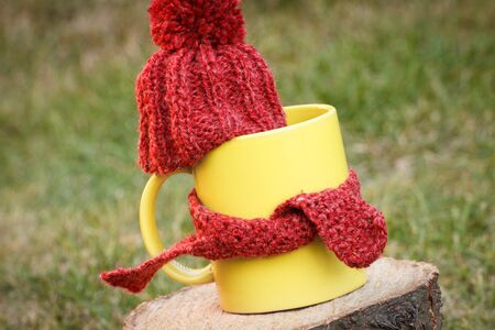 idea comfortable: Yellow cup of hot tea with woolen cap wrapped woolen scarf on wooden stump in garden, warming beverage for flu and cold Stock Photo
