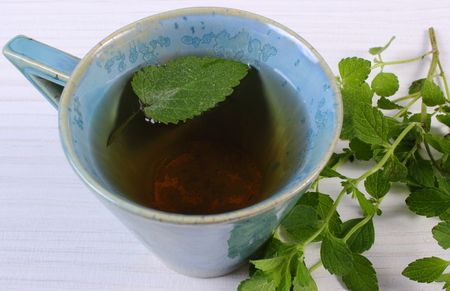 calming: Fresh green lemon balm and cup of calming herbal drink on white wooden table, sedative herbs, concept for healthy nutrition and herbalism