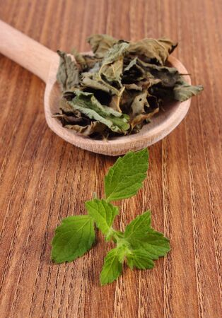 herbalism: Healthy fresh and dried lemon balm with spoon on wooden table, sedative herbs, concept for healthy nutrition and herbalism