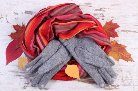 ladylike: Womanly woolen clothes and autumnal leaves, gloves shawl, warm clothing for autumn or winter, old rustic wooden background
