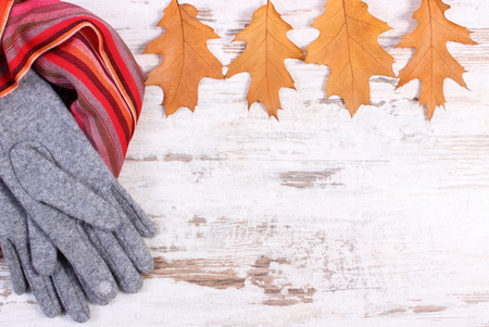 womanly: Frame of womanly woolen clothes and autumnal leaves, copy space for text, warm clothing for autumn or winter, old rustic wooden background Stock Photo