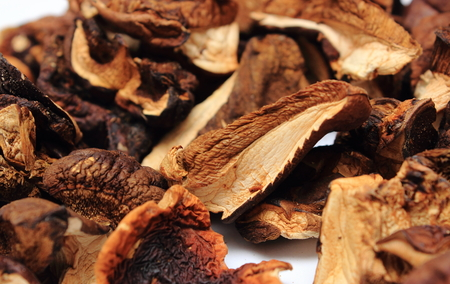forestry: Heap of dried forestry mushrooms