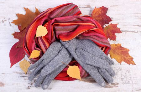 womanly: Womanly woolen clothes and autumnal leaves, gloves shawl, warm clothing for autumn or winter, old rustic wooden background