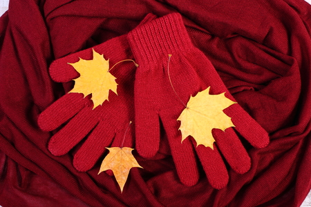 womanly: Womanly gloves and autumnal leaves on burgundy shawl background, warm clothing for autumn or winter
