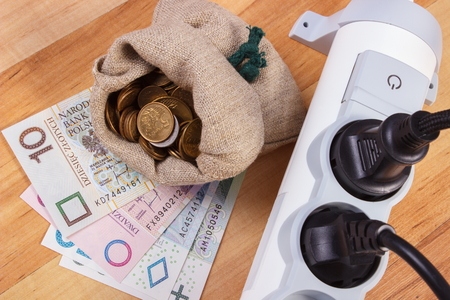 energy costs: Electrical power strip with connected plug and polish currency money on wooden floor, power board, concept of saving money on electricity, energy costs