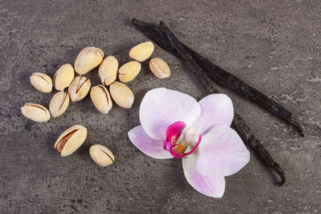 flower structure: Pistachio nuts, colorful blooming orchid flower and fresh fragrant vanilla sticks pods on structure of concrete, cosmetics ingredients Stock Photo