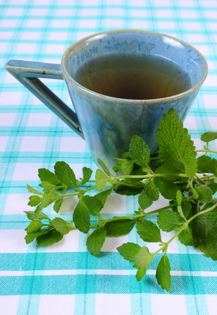sedative: Fresh green lemon balm and cup of calming herbal drink on tablecloth, sedative herbs, concept for healthy nutrition and herbalism