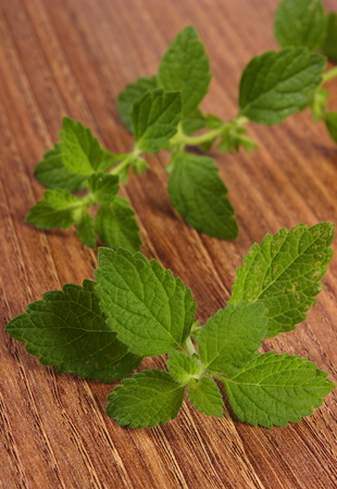 sedative: Fresh green lemon balm on wooden table, sedative herbs, concept for healthy nutrition and herbalism Stock Photo