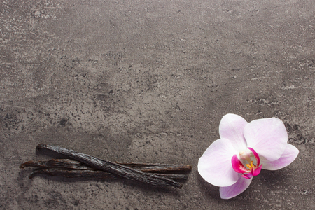 flower structure: Colorful blooming orchid flower and fresh fragrant vanilla sticks pods on structure of concrete, copy space for text Stock Photo