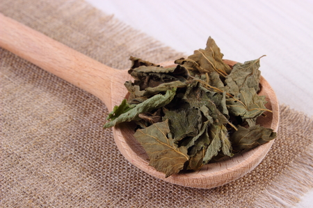 sedative: Heap of healthy dried lemon balm with spoon on white wooden table, sedative herbs, concept for healthy nutrition and herbalism