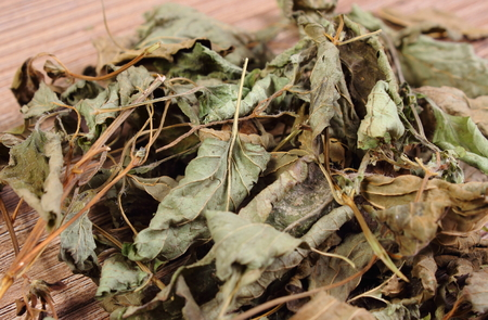 sedative: Heap of healthy dried lemon balm on wooden table, sedative herbs, concept for healthy nutrition and herbalism Stock Photo