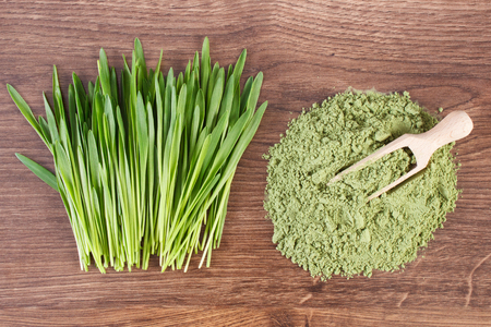 Barley grass and heap of young powder barley with wooden scoop