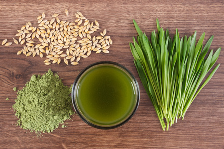 cebada: Barley grass with cup of beverage and grain with young powder barley
