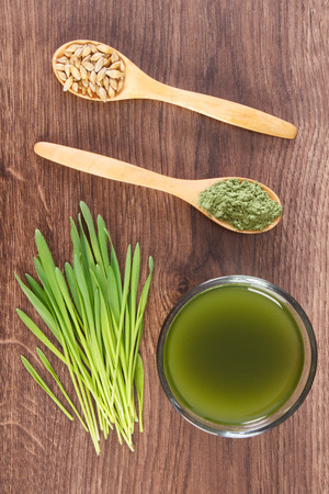 cebada: Barley grass with cup of beverage and grain with young powder barley on wooden spoon