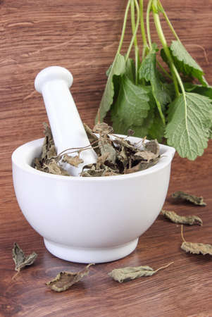 herbalism: Fresh natural green and dried lemon balm in white mortar on rustic board, healthy lifestyle, herbalism, alternative medicine