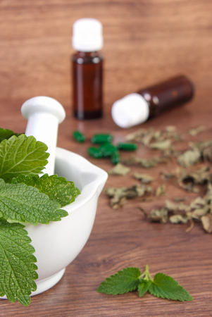 medical choice: Dried and fresh green lemon balm in white mortar and medical capsules, choice between pills and alternative medicine, healthy lifestyle, herbalism Stock Photo