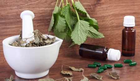 medical choice: Fresh green and dried lemon balm in white mortar and medical capsules, choice between pills and alternative medicine, healthy lifestyle, herbalism