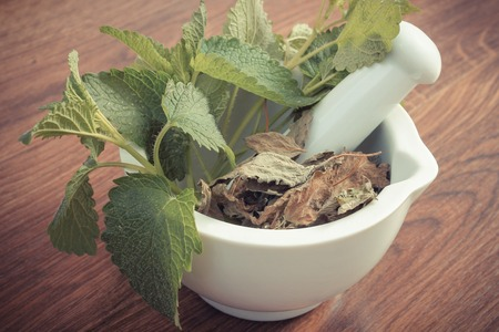 herbalism: Vintage photo, Fresh natural green and dried lemon balm in white mortar on rustic board, healthy lifestyle, herbalism, alternative medicine
