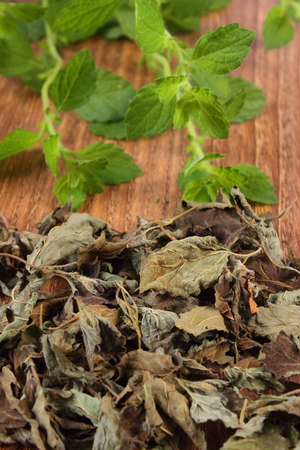 herbalism: Heap of dried and fresh lemon balm on wooden table, sedative herbs, concept of healthy nutrition and herbalism Stock Photo