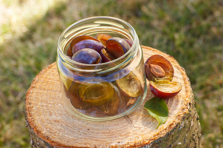 Fresh plums in glass jar lying on wooden stump in garden on sunny day, healthy nutrition, preparation for preserved plums