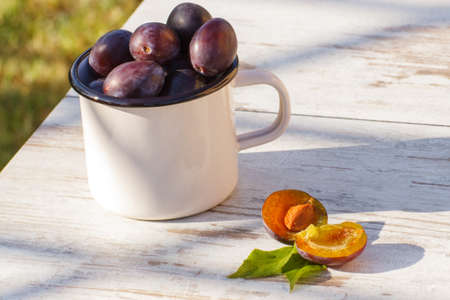 purple leaf plum: Heap of fresh plums in metallic mug lying on wooden rustic table in garden on sunny day, healthy nutrition Stock Photo