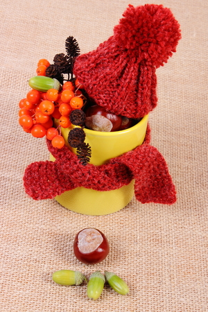 Autumn decoration with yellow cup wrapped scarf and woolen cap on jute canvas