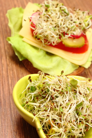 freshly prepared: Green bowl with alfalfa and radish sprouts and freshly prepared vegetarian sandwich lying on wooden table, concept of healthy lifestyle diet food and nutrition
