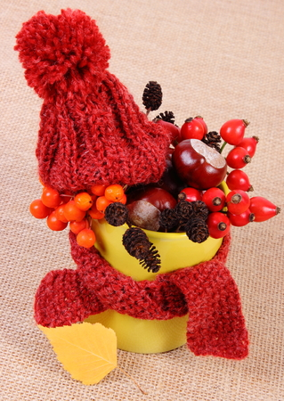 Autumn decoration with yellow cup wrapped woolen scarf and cap on jute canvas