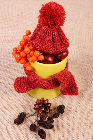 yellow alder: Autumn decoration with yellow cup wrapped woolen scarf and cap on jute canvas