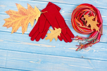 Woolen gloves, colorful shawl for woman and autumnal leaves on old boards, warm clothing for autumn or winter, womanly accessories, copy space for text