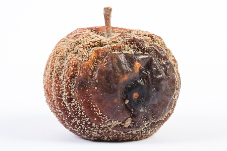 Closeup of old wrinkled apple with mold on white background, unhealthy food