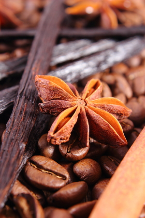 Closeup of star anise, fresh fragrant vanilla pods, cinnamon sticks and coffee grains, seasoning ingredients for cooking or baking Stock Photo