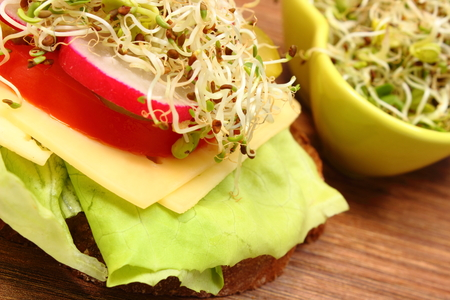 freshly prepared: Freshly prepared vegetarian sandwich and green bowl with alfalfa and radish sprouts lying on wooden table, concept of healthy lifestyle, diet, food and nutrition