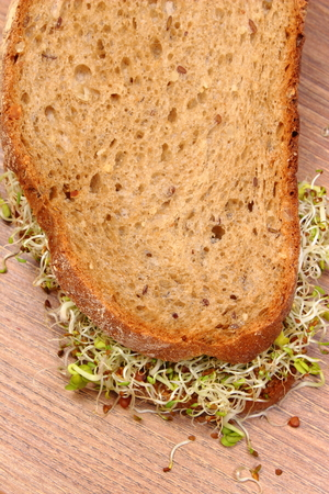 Slice of fresh baked wholemeal bread with alfalfa and radish sprouts on wooden surface, concept of healthy lifestyle, diet, food and nutrition